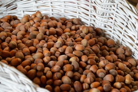 harvest of hazelnuts in white wicker basket
