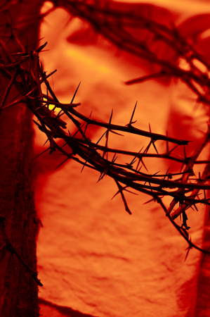 Blood red crown of thorns close up with old wooden beam on cloth