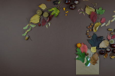 open envelope with autumnal greetings like colorful leaves, seeds, chestnuts, nuts and other fruits on brown background with copy space