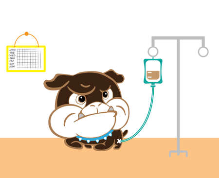 saline solution: illness puppy at dog hospital and saline solution