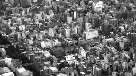 bird eye: Tokyo Bird Eye View CityScape