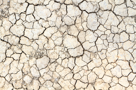 cracked clay ground in the dry season photo