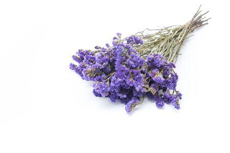 dried flower arrangement: Dry statice flower on white background