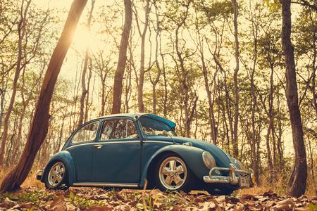 magnum: Nakhon Ratchasima, THAILAND - MAY 1 : Volkswagen retro vintage car blue color in Forest Leaves Brown. on MAY 1, 2016 in Nakhon Ratchasima Thailand. is Editorial