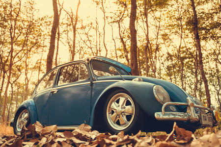 Nakhon Ratchasima, THAILAND - MAY 1 : Volkswagen retro vintage car blue color in Forest Leaves Brown. on MAY 1, 2016 in Nakhon Ratchasima Thailand. is Editorial