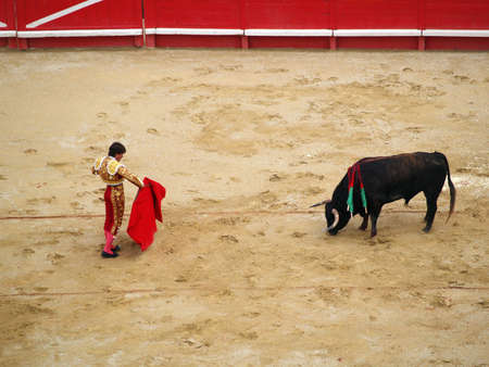 Bullfighter and black bull in action. Nimes, France