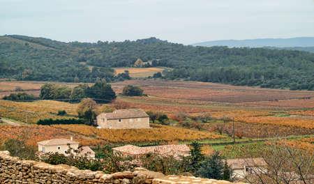 autumn landscape in Provence, France photo