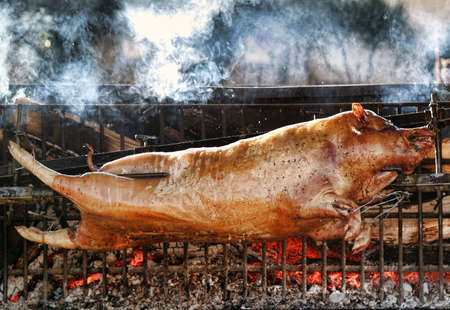 Roasting piglet on the split firewood. Stock Photo