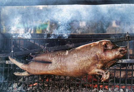 Roasting piglet on the split firewood. photo