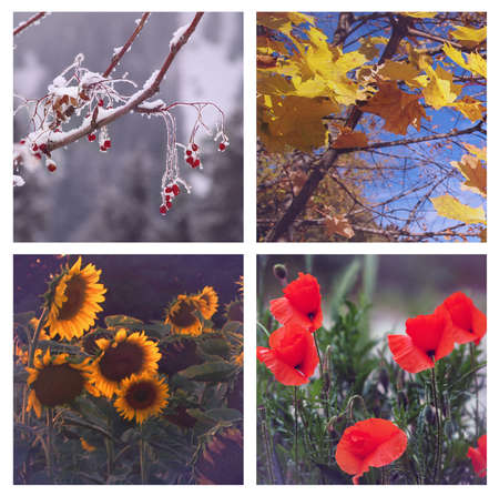 seasonal symbol: Four Seasons on sundown Stock Photo