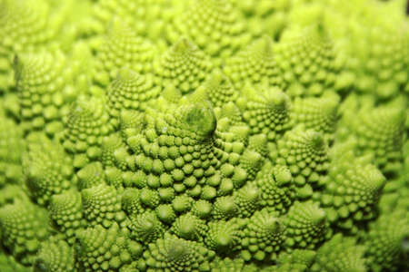 romanesco: romanesco cauliflower
