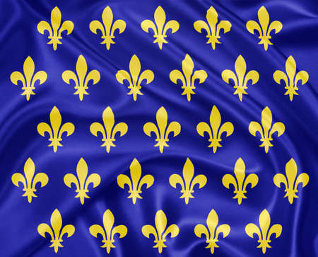 sheen: The flag of medieval France waving with highly detailed textile texture pattern