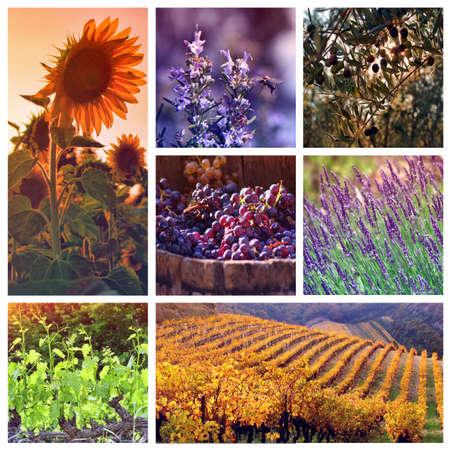 Provence Colore Tavolozze: collage con 7 foto photo