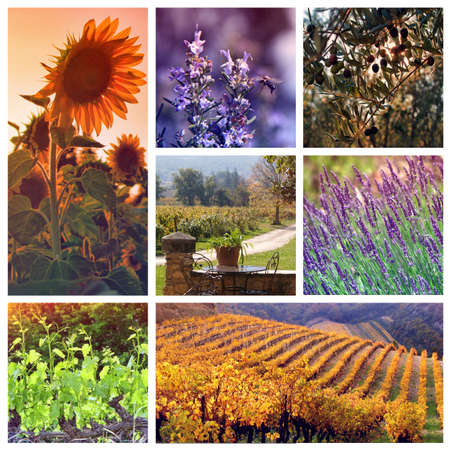 Provence Color Palettes: collage with 7 photos   photo
