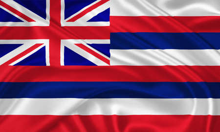 hawaii flag: Flag of  Hawaii waving with highly detailed textile texture pattern