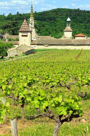 Monastery of Valbonne near  Saint Paulet de Caisson in Gard Provencal, south of France photo