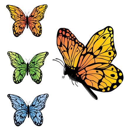 butterfly isolated: Butterflies set