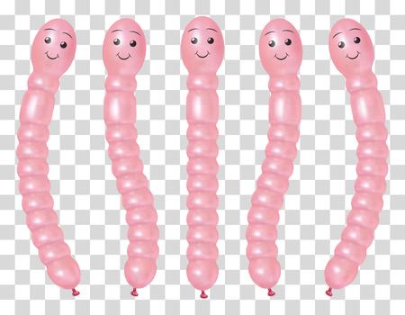 Earthworm shaped transparent balloon