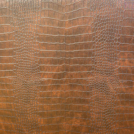 fabric surface: Snake Skin Texture