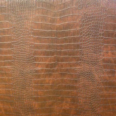 textura tierra: Textura de la piel de serpiente Foto de archivo