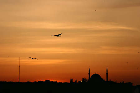 Sunset above Istanbul with the silhouette of mosques and seagulls photo