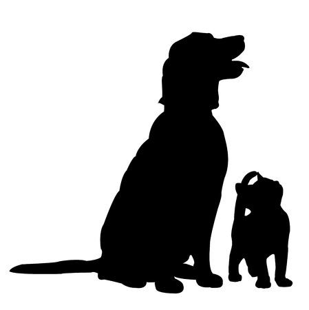 silhouette gatto: Cane e gatto, alzando lo sguardo sullo sfondo isolato. Vettoriali