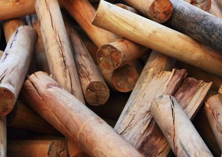 unanimous: firewoods Stock Photo