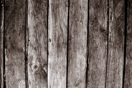 vertical wood texture photo
