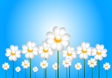 Daisies Illustration Vector