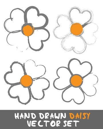 flowers close up: Hand drawn Daisy Set