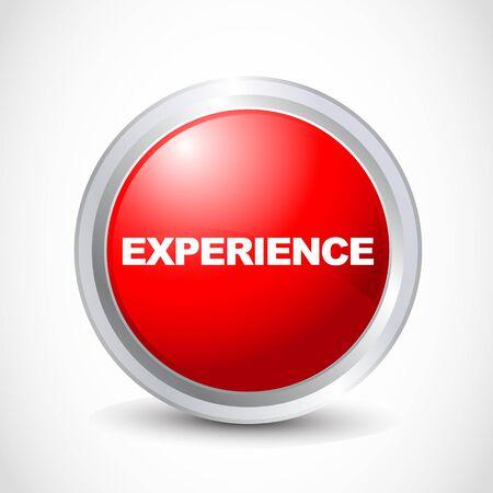 Experince botón brillante