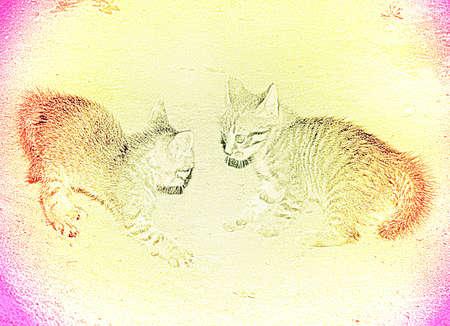 varicoloured: abstract scene varicoloured kitty Stock Photo