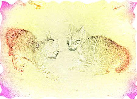 varicoloured: Varicoloured dos gatos en la textura de fondo  Foto de archivo