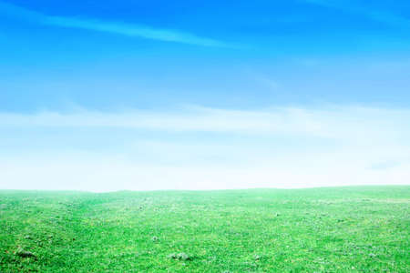 blue sky on green floor Stock Photo - 3055815