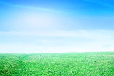 blissfull: background blue sky on green floor Stock Photo