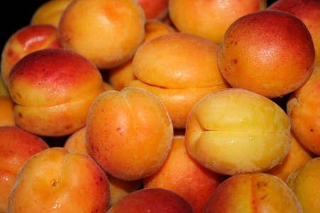 refreshment: beautiful ripe juicy apricots