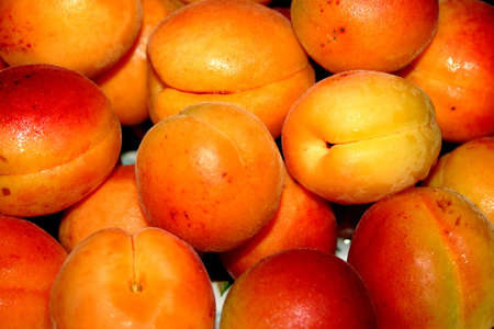 afters: apricots
