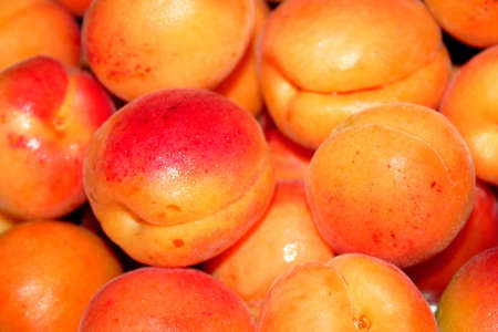 afters: juicy apricots Stock Photo