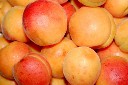 afters: apricot