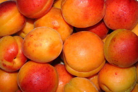 afters:  juicy apricots