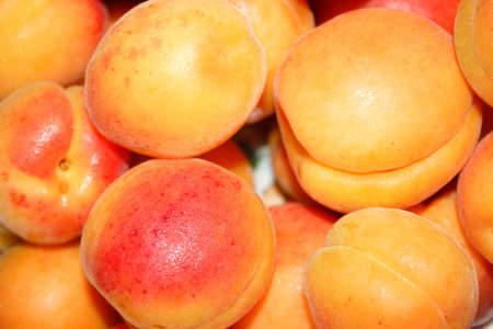 afters: fresh juicy apricots