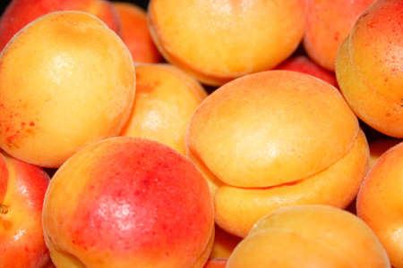 afters: beautiful ripe juicy apricot
