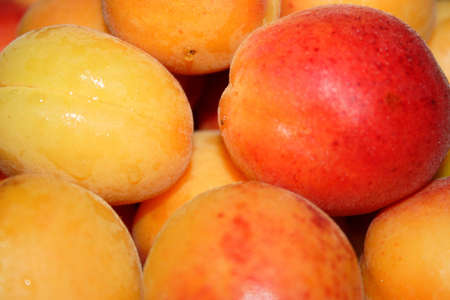 afters: ripe juicy apricots