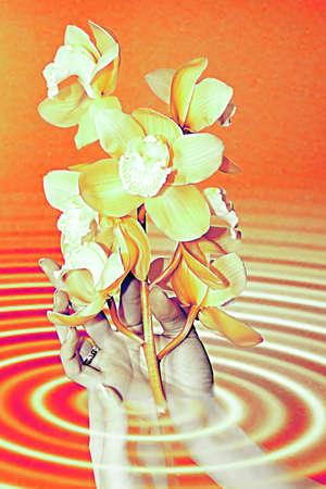blissfull: abstract scene of the feminine hands keeps flower