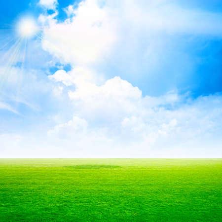 grassy: abstract scene grassy under sky
