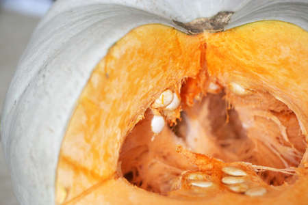afters: fresh ripe pumpkin for morning meal