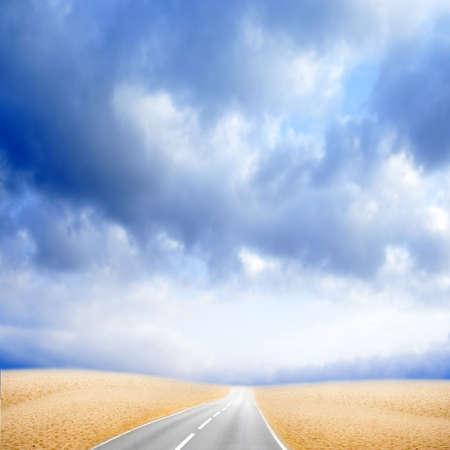 garden path: car road in desert