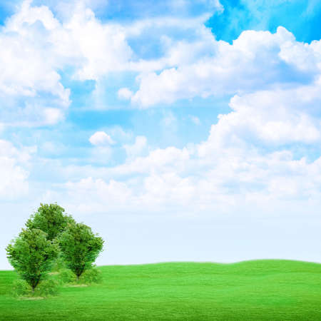 tree on green meadow under abstract brightly blue sky photo