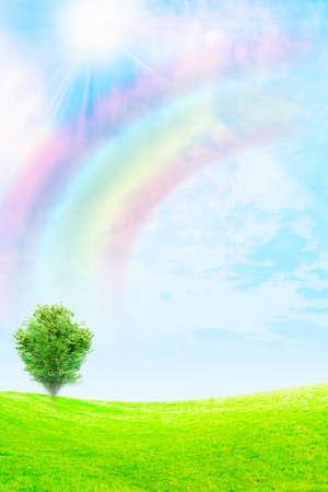 rural area: rainbow on the sky