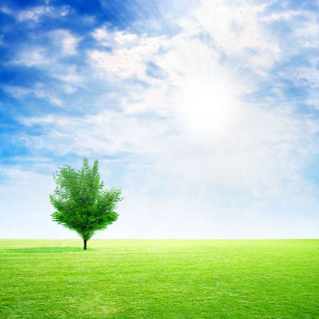 abstract scene of the meadow on background sky